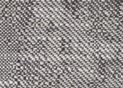 Elm 19319
